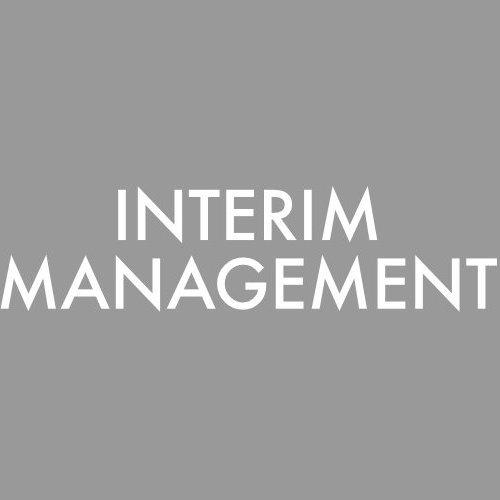 Interim Management Projektmanagement